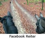 Facebook-Seite Trakehner Reiter in Bayern